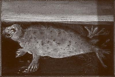 »See-Hund«, Ölgemälde im kurfürstlichen Schlafzimmer in Höflößnitz Foto: Stadtarchiv Radebeul